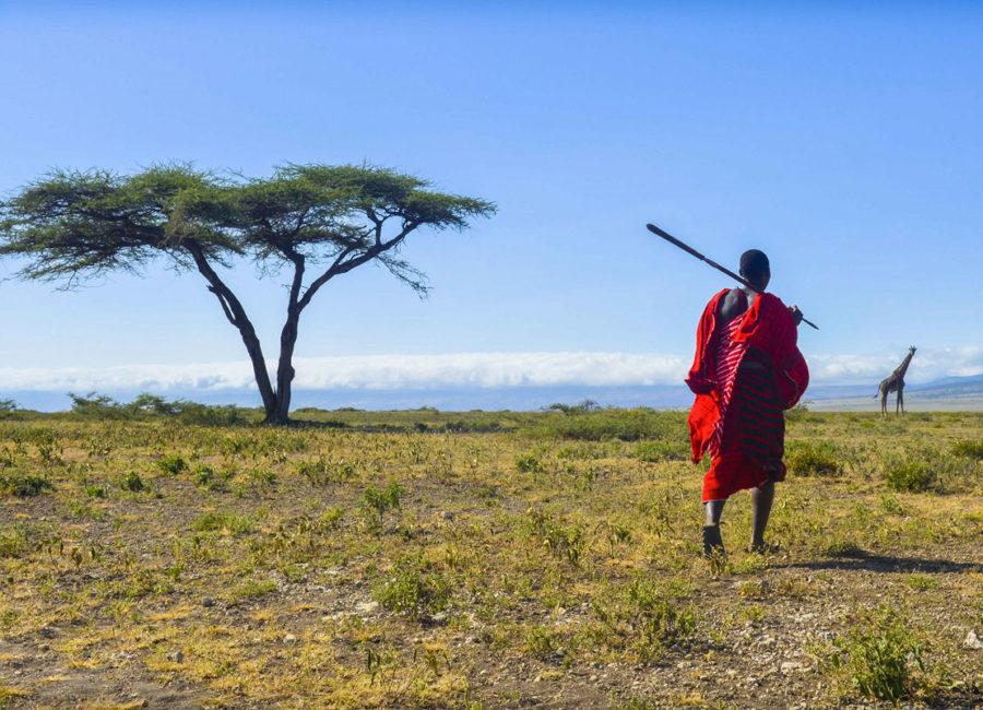 Incentive en Tanzanie et Zanzibar